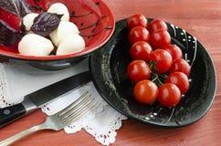 Ingradients för italiensk caprese sallad med den nya basilikasidor, tomaten och mozzarellaen på den röda trätabellen Arkivbilder