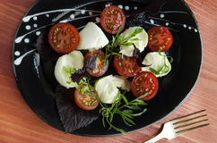 Ingradients för italiensk caprese sallad med den nya basilikasidor, tomaten och mozzarellaen på den röda trätabellen Fotografering för Bildbyråer