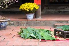 Ingradients pour inciter Chung à durcir, la nourriture la plus importante de la nouvelle année lunaire vietnamienne Tet Image libre de droits