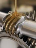 Ingranaggi di lubrificazione Fotografia Stock