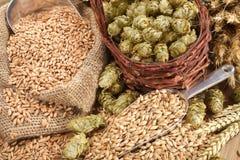 Ingrédients de bière Photos stock