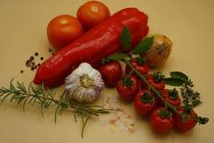 Ingrediënten om Italiaanse deegwarensaus te maken stock afbeelding