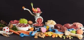 Ingrediënten voor BARF-voedsel voor honden royalty-vrije stock afbeelding