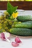 Ingrediënten voor het inleggen van komkommers Stock Foto's
