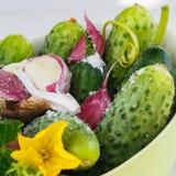 Ingrediënten voor het inleggen van komkommers, vierkant Royalty-vrije Stock Fotografie