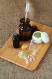 Ingrediënten voor het maken van eigengemaakte schoonheidsmiddelen stock foto