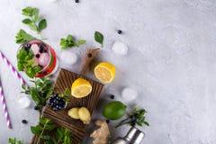 Ingrediënten voor het maken van limonade, Mojito-Cocktails of andere dranken met bosbes op een grijze achtergrond stock fotografie