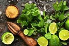 Ingrediënten voor het maken van mojito van de de zomerlimonade Hoogste mening Stock Foto