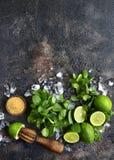 Ingrediënten voor het maken van mojito van de de zomerlimonade Hoogste mening met exemplaar royalty-vrije stock afbeeldingen
