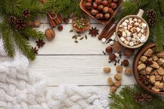 Ingrediënten voor kruidige hete chocolade of koffie stock foto's
