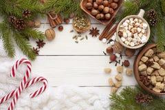 Ingrediënten voor kruidige hete chocolade of koffie stock foto