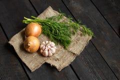 Ingrediënten voor soep of salade: ui, knoflook, dille op een donkere achtergrond Stock Foto