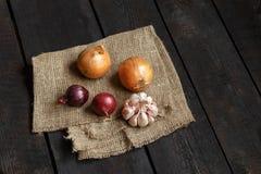 Ingrediënten voor soep of salade: ui, knoflook op een donkere achtergrond Stock Fotografie