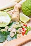 Ingrediënten voor Thais kruidig voedsel. Royalty-vrije Stock Foto