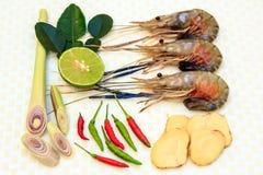 Ingrediënten voor Tom Yum Koong. Stock Foto's