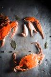 Ingrediënten voor verse krab met pimentbes en laurierblad Stock Foto's