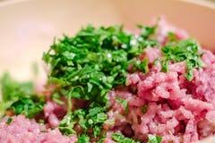 Ingredi?nt van het vlees het ruwe verse voedsel plaat stock afbeeldingen
