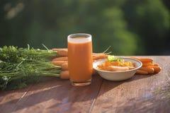 Ingrediens av sunda näringmorötter, i olik disk Arkivbilder