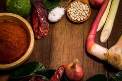 Ingrediens av thailändsk röd currydeg royaltyfri fotografi