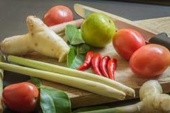 Ingredienser av thailändsk kokkonst Arkivbilder