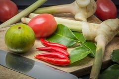 Ingredienser av thailändsk kokkonst Arkivfoto
