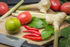 Ingredienser av thailändsk kokkonst Arkivbild