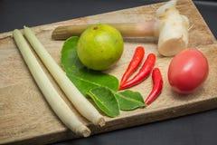 Ingredienser av thailändsk kokkonst Fotografering för Bildbyråer