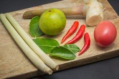 Ingredienser av thailändsk kokkonst Royaltyfri Foto