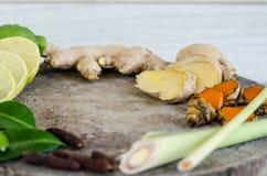 Ingredienser av thailändsk kryddig mat, tom yum Royaltyfri Fotografi