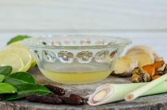 Ingredienser av thailändsk kryddig mat, tom yum Royaltyfria Bilder
