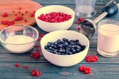 Ingredienser för att laga mat smoothievinbäret Royaltyfria Foton