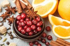 Ingredienser för att laga mat traditionella kryddiga vinterdrinkar Arkivfoto