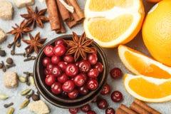 Ingredienser för att laga mat traditionella kryddiga vinterdrinkar Fotografering för Bildbyråer