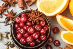 Ingredienser för att laga mat traditionella kryddiga vinterdrinkar Arkivbild