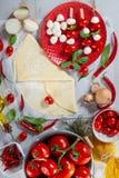 Ingredienser för förberedelsen av pizza royaltyfria foton