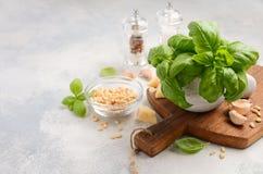 Ingredienser för framställning av grön pestosås sund italienare för mat royaltyfri fotografi