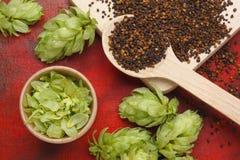 Ingredienser för hem- gjort öl arkivfoton