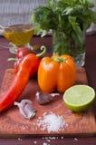 Ingredienser för hemlagad salsasås Arkivbild