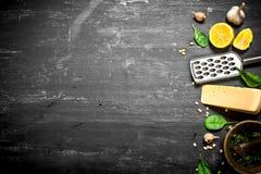 Ingredienser för italiensk pesto Fotografering för Bildbyråer