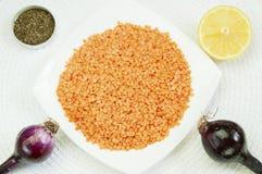 Ingredienser för linssoppa Royaltyfri Foto