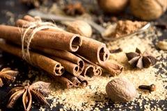ingredienser för matlagning för anisejul kryddar kanelbruna stjärnasticks royaltyfria foton