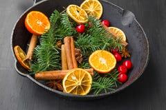 ingredienser för matlagning för anisejul kryddar kanelbruna stjärnasticks Anis tranbär, granträdfilialer, orange sli Arkivfoton