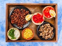 Ingredienser för mexicansk mat Arkivbilder