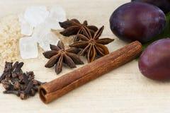 Ingredienser för plommondriftstopp Arkivfoto
