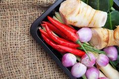 Ingredienser för Tomyum thailändska matsmaktillsats på bakgrund Royaltyfria Bilder