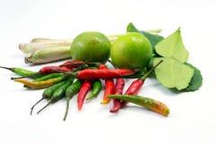 Ingredienser för varm och sur thailändsk soup, Tom Yum Arkivbilder