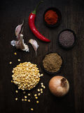 Ingredienser för vegetarisk curry Arkivfoto