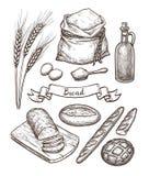 Ingredienser och bröduppsättning vektor illustrationer