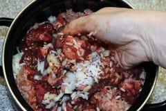 Ingredienser och ett av momenten för att laga mat som är zrazy Arkivbilder