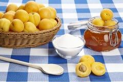 Ingredienser som lagar mat aprikosdriftstopp Royaltyfria Foton